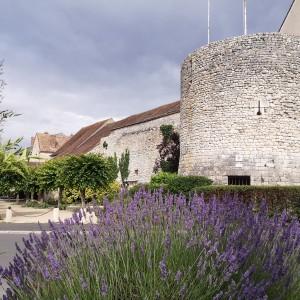 Tour Madeleine Château-Landon